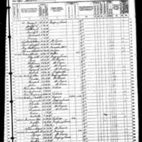 1870 census melville hutchison.jpg