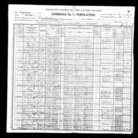 HenryLewis 1900 federal census.jpg