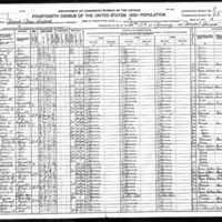 1920 census walter presgraves.jpg