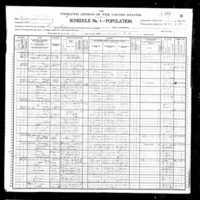 1900 census walter presgraves.jpg